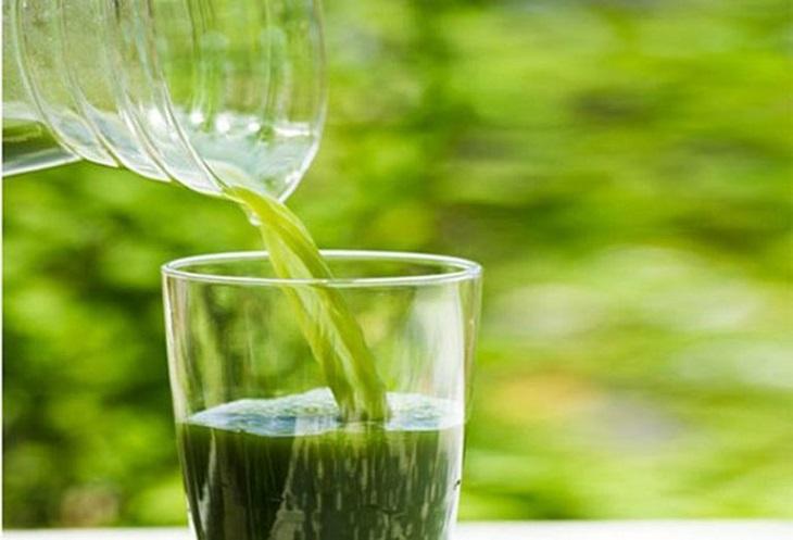 Uống nước lá khế là cách chữa chàm từ bên trong, giúp phục hồi chức năng gan thận