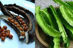 4 bài thuốc chữa đau dạ dày bằng đậu rồng được dùng nhiều nhất