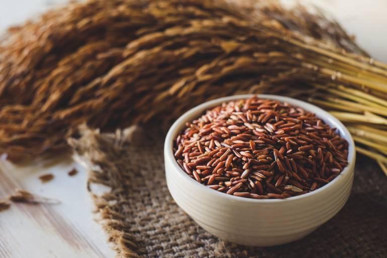 Những lưu ý khi chữa đau dạ dày bằng gạo lứt để có hiệu quả tốt nhất