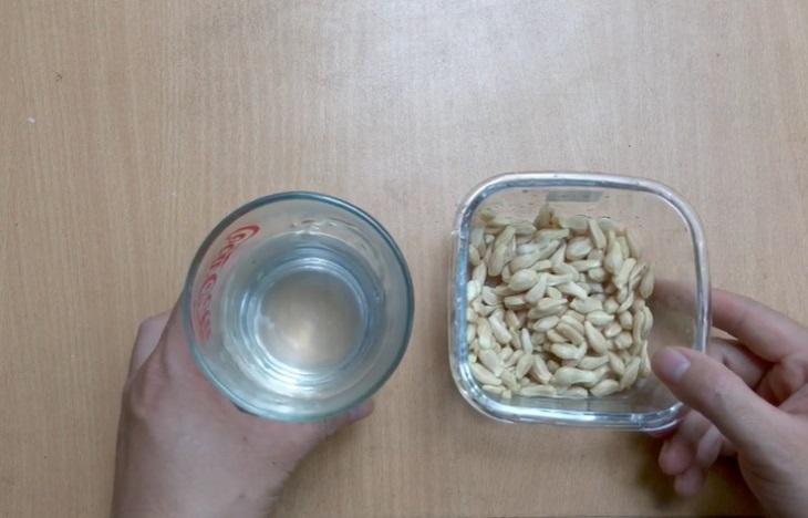 Hạt bưởi có vị đắng nhưng không quá khó uống trong chữa đau dạ dày