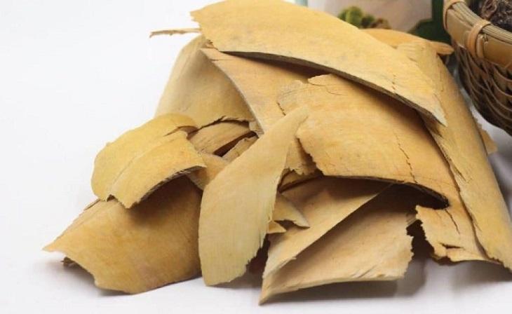 Có nên dùng rễ sim chữa đau dạ dày thay thuốc Tây