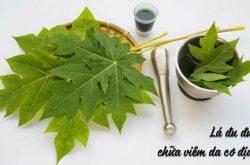 Chữa viêm da cơ địa bằng lá đu đủ có hiệu quả không?