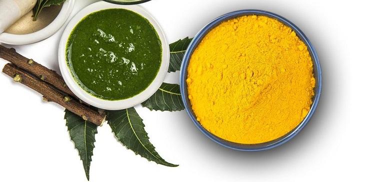 Trị eczema bằng lá neem kết hợp với bột nghệ giúp tăng hiệu quả chống viêm và kháng khuẩn