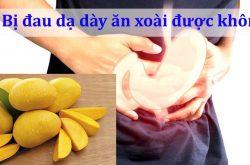 Nhiều người bệnh quan tâm bị đau dạ dày ăn xoài được không