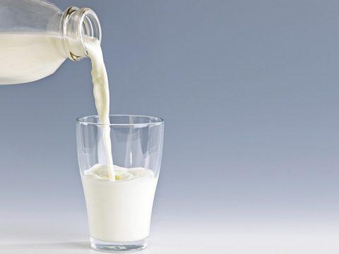 Đau dạ dày uống sữa tươi liệu có ảnh hưởng?