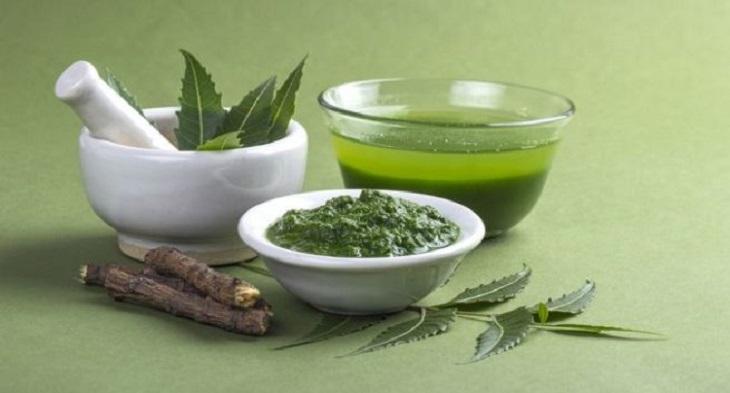 Trị eczema bằng lá neem giúp điều trị toàn diện các vị trí bệnh chàm