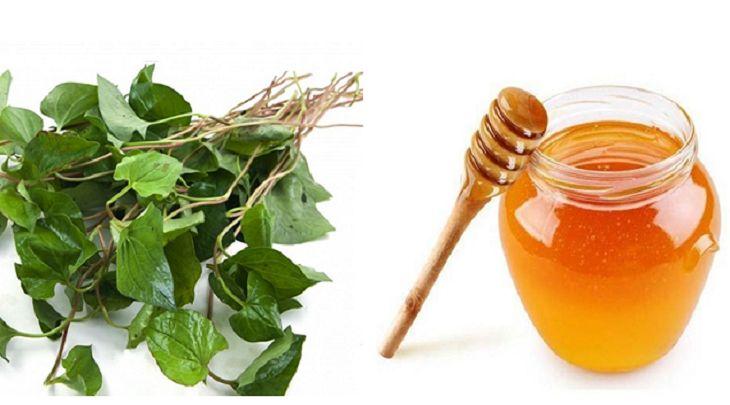 Bạn nên sử dụng mật ong kết hợp với rau diếp cá để chữa viêm amidan vì mật ong có vị ngọt khá dễ uống