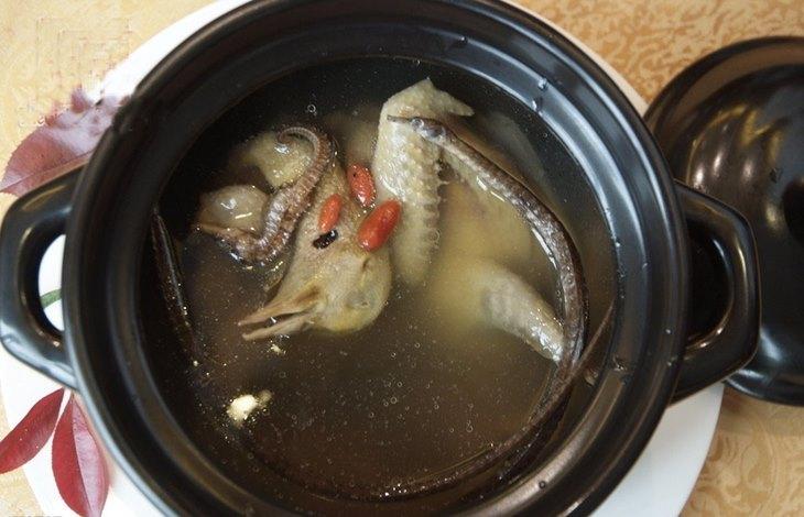 Gà hầm hải mã - Món ăn bổ dưỡng cho các quý ông