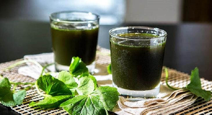 Uống nước rau má hàng ngày sẽ giúp giảm ngứa, bớt mẩn đỏ cho da