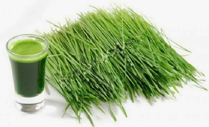 Uống nước ép hẹ hoặc ăn các món ăn từ hẹ giúp tăng cường sinh lý nam hiệu quả
