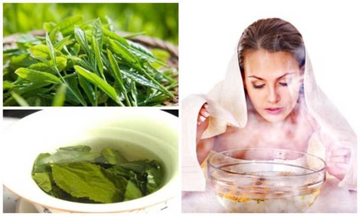 Trị viêm xoang hiệu quả bằng lá trà xanh