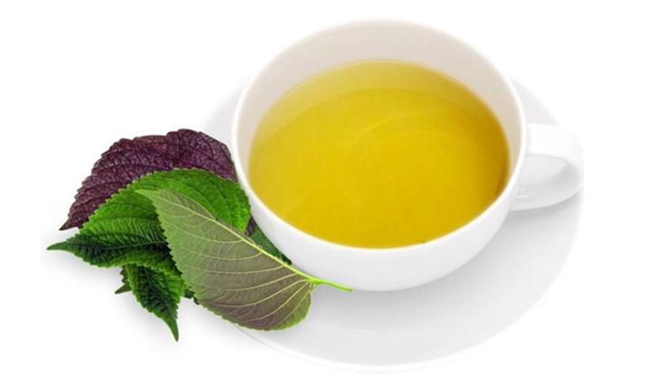 Cách chữa mề đay bằng trà lá tía tô