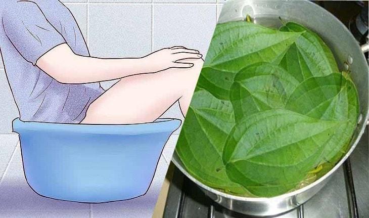 Chữa viêm âm đạo bằng lá trầu không bằng phương pháp ngâm rửa
