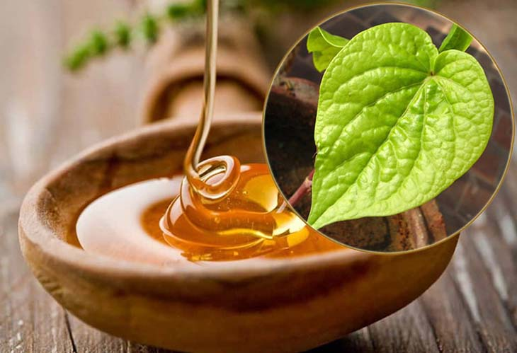 Chữa viêm amidan bằng lá trầu không và mật ong