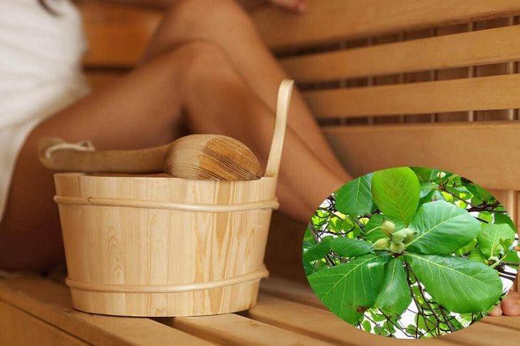 Sử dụng lá bàng sắc nước xông bộ phận sinh dục giúp chữa viêm cổ tử cung hiệu quả