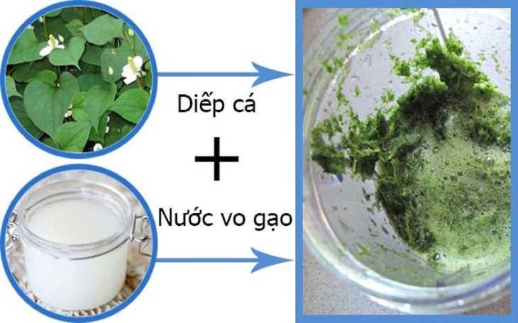 Cách chữa viêm họng bằng rau diếp cá và nước vo gạo rất đơn giản, dễ thực hiện