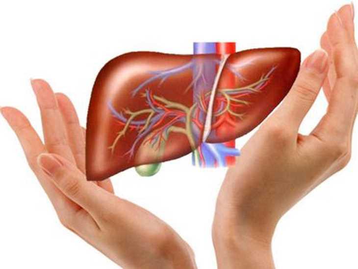 Viêm gan, xơ gan, suy giảm chức năng gan cũng là nguyên nhân khiến ngứa khắp người
