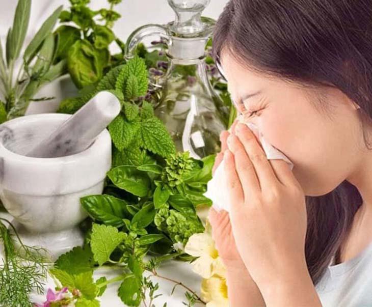 Chữa viêm xoang bằng thảo dược là phương pháp được nhiều người tin dùng