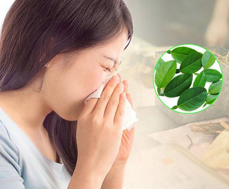 Lá chanh giúp đẩy lùi bệnh viêm xoang chỉ sau thời gian ngắn điều trị