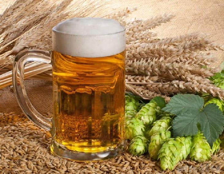 Thực phẩm hỗ trợ điều trị viêm lộ tuyến: Cần tránh xa bia rượu