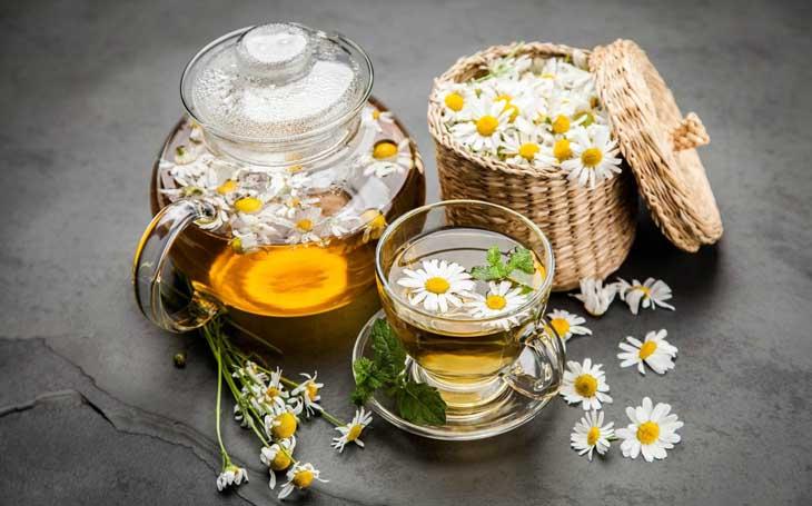 Phụ nữ mang thai bị amidan có thể dùng trà hoa cúc ở lượng vừa phải