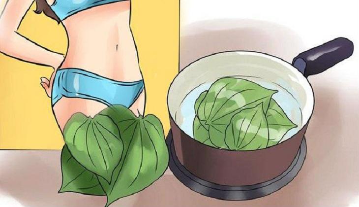 Dùng lá trầu không sắc nước vệ sinh sinh dục giúp giảm tình trạng viêm cổ tử cung khi mang thai