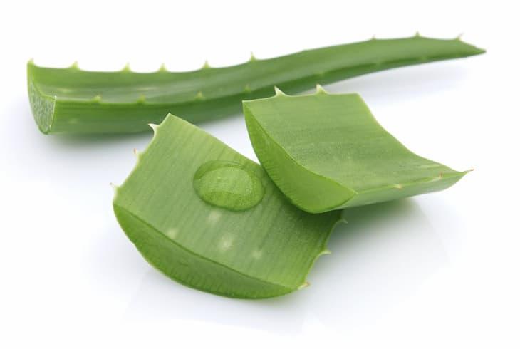 Nha đam có công dụng cấp ẩm và dưỡng da mụn rất hiệu quả