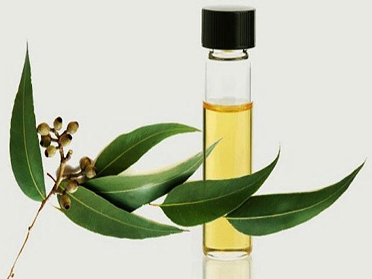 Tinh dầu giúp thông thoáng mũi xoang, thư giãn tinh thần và dễ ngủ