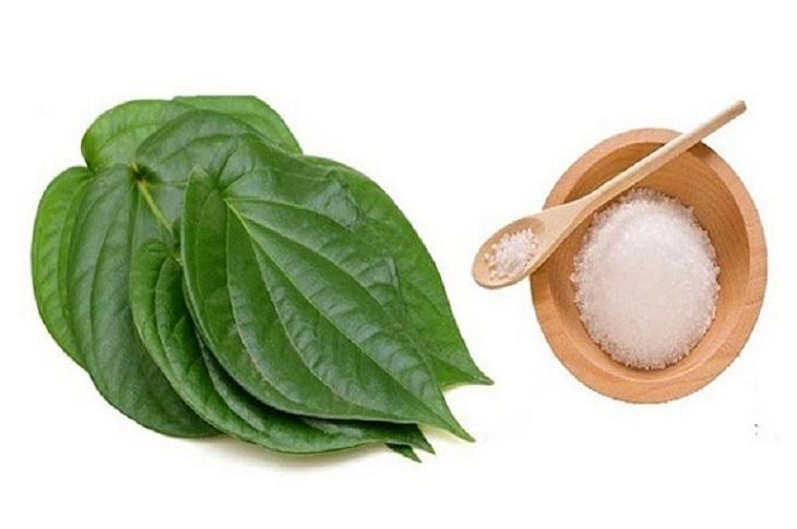 Kết hợp lá trầu không và muối để chữa chàm sữa