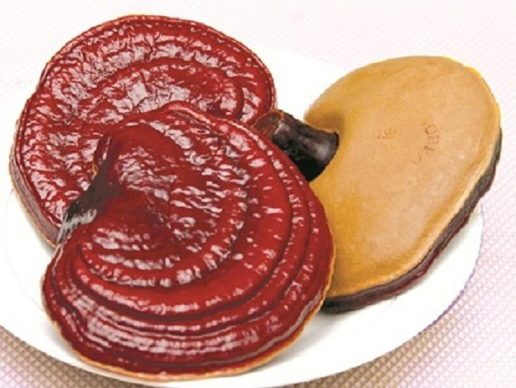 Linh chi là vị thuốc Đông y quý có tác dụng trị lạc nội mạc tử cung
