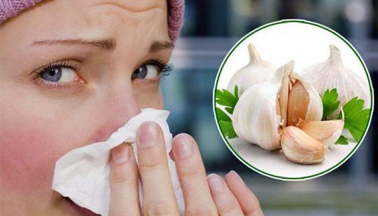 Cách chữa viêm mũi dị ứng bằng tỏi hiệu quả