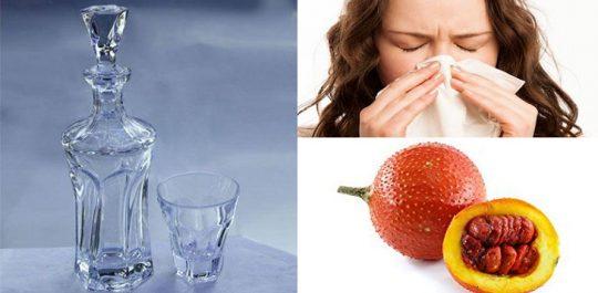 Mẹo chữa viêm mũi dị ứng bằng rượu gấc và cách làm