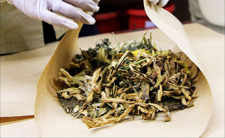 Chữa yếu sinh lý bằng lá lốt kết hợp thêm một số vị thuốc Đông y sẽ mang lại hiệu quả vượt trội