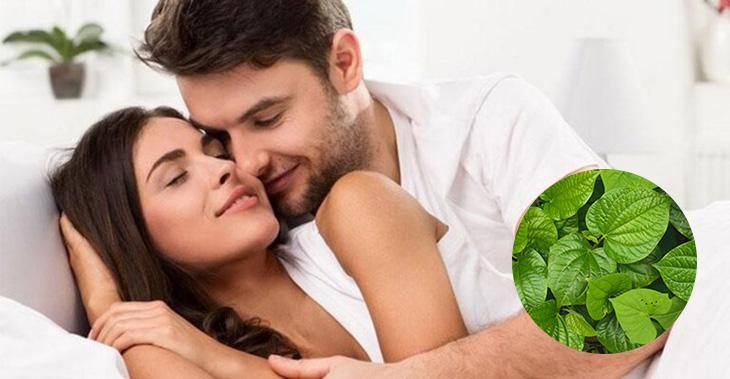 Lá lốt là vị thuốc tốt giúp phải mạnh lấy lại bản lĩnh đàn ông