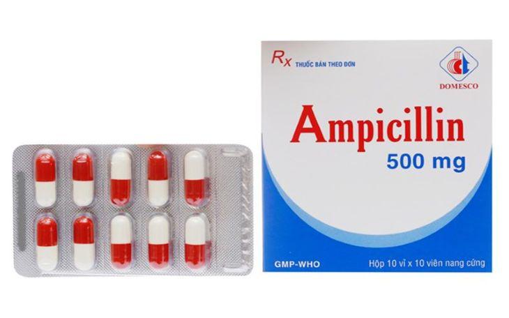 Các thuốc kháng sinh như Ampicillin thường được chỉ định khi người bệnh có vi khuẩn Hp