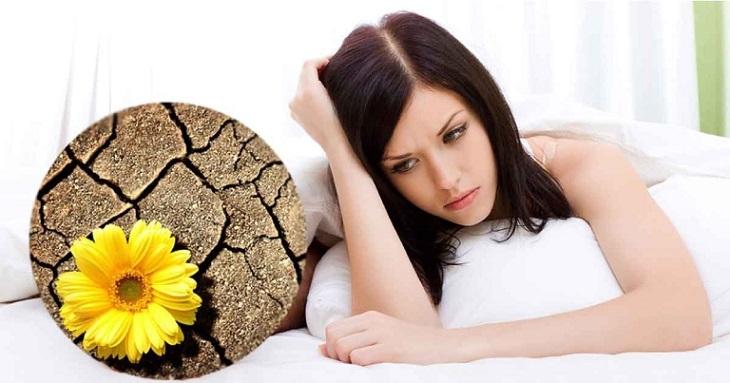 Khô rát âm đạo là một trong những dấu hiệu tiền mãn kinh phổ biến hiện nay