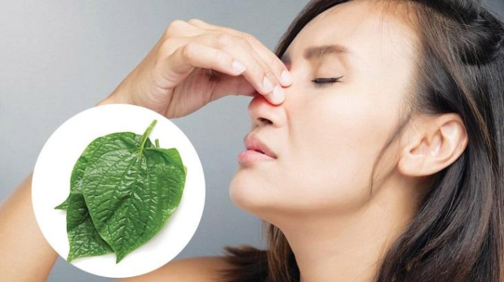 Người bệnh có thể an tâm khi áp dụng phương pháp chữa viêm mũi dị ứng bằng lá lốt