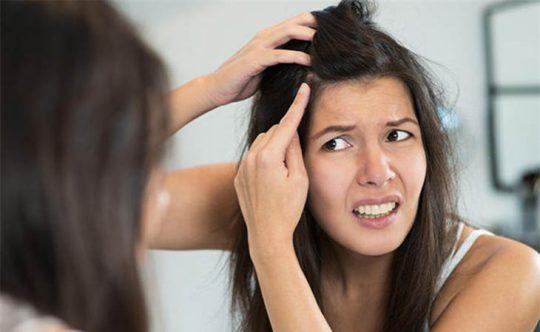 Ngứa da đầu và rụng tóc do bệnh nấm da đầu