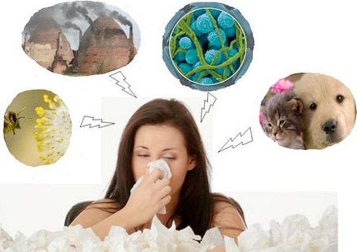 Nguyên nhân gây bệnh khởi phát do nhiều nguyên nhân như khó bụi, lông động vật