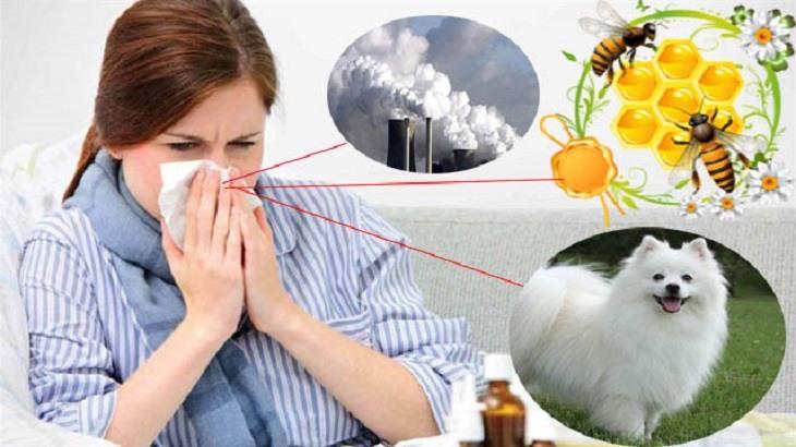 Phòng ngừa bệnh tốt, bạn sẽ không còn phải lo đến vấn đề viêm mũi dị ứng có chữa được không
