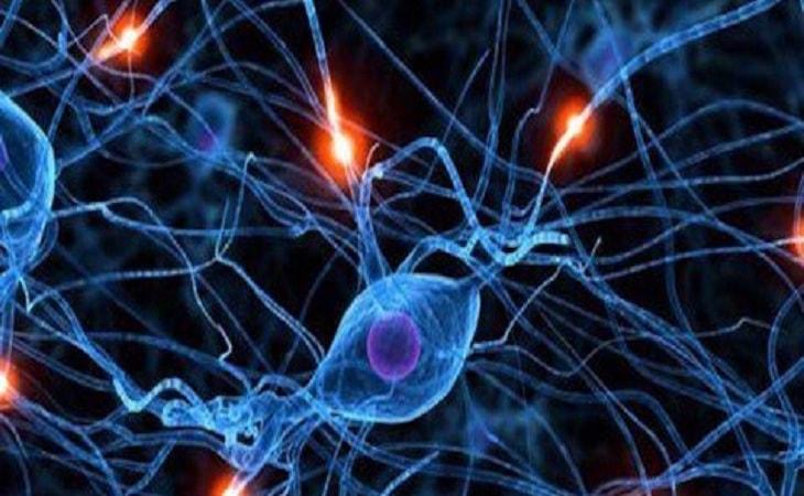 Sốt quá cao có thể gây tổn thương não bộ và thần kinh nếu không được xử trí kịp thời