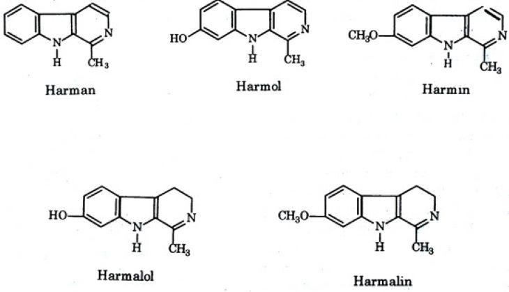 Công thức hóa học của một số hoạt chất trong cây lạc tiên