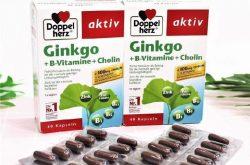 Thuốc tiền mãn kinh của Đức - Ginkgo là sản phẩm không thể bỏ qua cho chị em