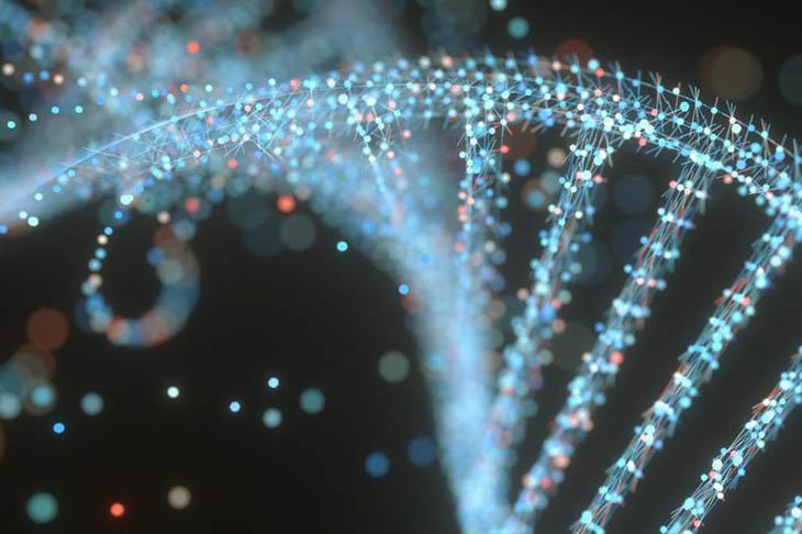 Hầu như người bị vảy nến thể giọt thường có bất thường ở nhiễm sắc thể số 6