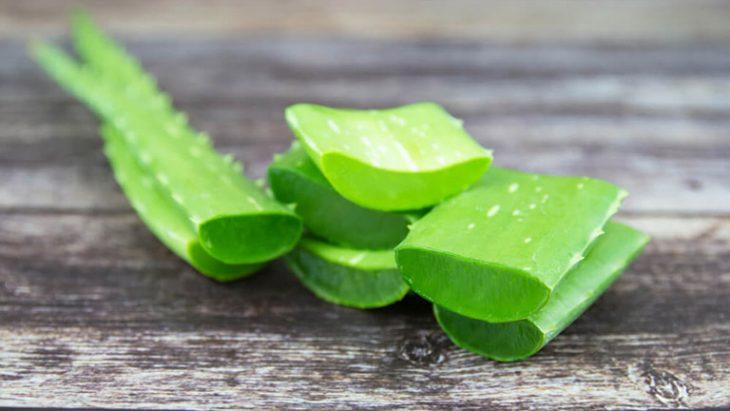 Nha đam có tác dụng dưỡng ẩm da và giảm ngứa hiệu quả cho người bị vảy phấn hồng