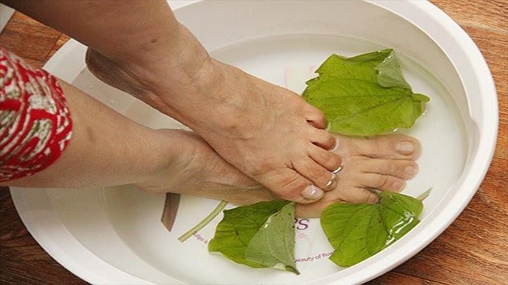 Ngâm chân với nước lá lốt