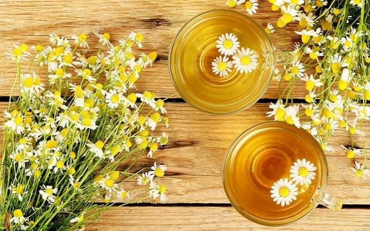 Viêm họng mãn tính là gì? Điều trị tại nhà với trà hoa cúc hiệu quảTrà hoa cúc mật ong giúp cải thiện triệu chứng viêm họng mãn tính