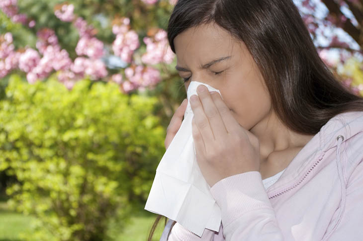 Viêm mũi dị ứng theo mùa là một bệnh quen thuộc tại đường hô hấp
