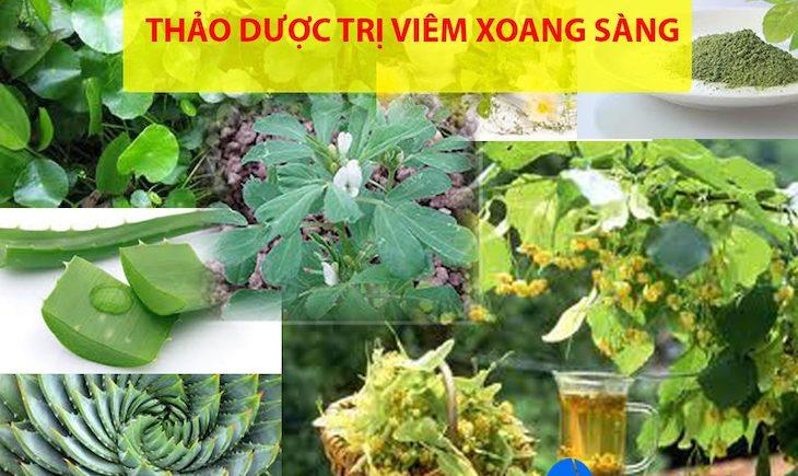 Các loại thảo dược tự nhiên chữa viêm xoang sàng sau