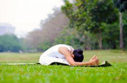 yoga chua viem mui di ung 3